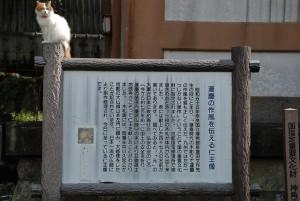 181014-31